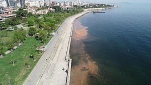 Silivri ve Büyükçekmece'den sonra şimdi de Kadıköy