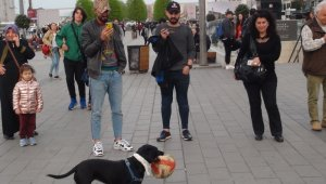 Taksim'de hünerlerini sergileyen köpek, vatandaşların ilgi odağı oldu