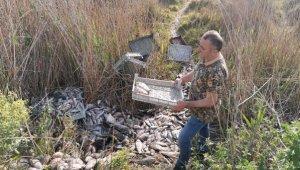 1 ton balığı, piknik alanına bırakıp kaçtılar - Bursa Haberleri