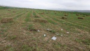 Arazi anlaşmazlığı kanlı bitti: 2 ölü