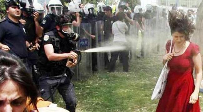 Gezi Parkı'nın kırmızı kadını Anayasa Mahkemesi'ne başvurmuştu, Yaptığı başvuru sonuçlandı
