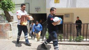 İkiz bebeklerin esrarengiz ölümü... 6 çocuklarını kaybettiler sebebi bilnmiyor