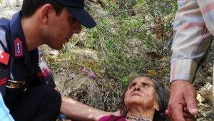 Kayıp yaşlı kadın, ormanlık alanda bu halde bulundu