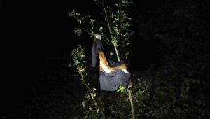 Kayıp zihinsel engellinin kazağı, ağaca asılı bulundu - Bursa Haberleri