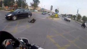 Otomobilin köpeğe çarparak metrelerce ileri fırlattığı kaza kamerada