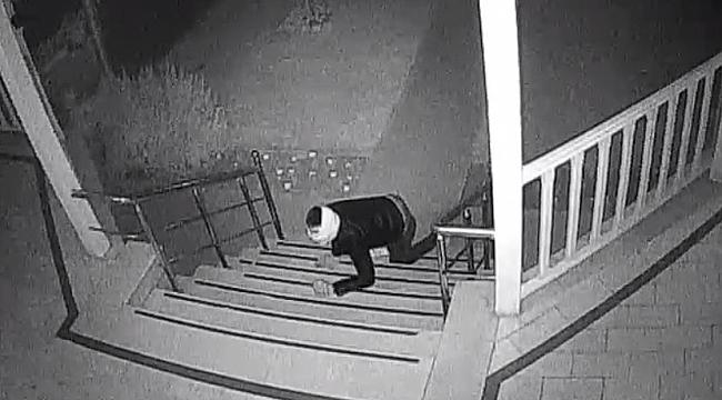 Sürünerek eve girdi, koşarak kaçtı
