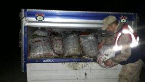 Van'da kaçak avlanan 5,5 ton inci kefali ele geçirildi
