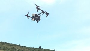 Bursa kestanesi drone ile korunacak - Bursa Haberleri