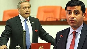 CHP Milletvekili,