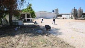 Çiftlikte korkunç olay... Gözaltına alınanlar arasında 16 yaşında kız da var