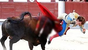 İspanyda'da matador, şov yapayım derken canından oluyordu!