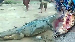 Kayıp çiftçinin cesedi timsahın karnından çıktı