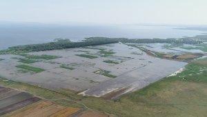 Su altında kalan tarım arazileri havadan görüntülendi - Bursa Haberleri