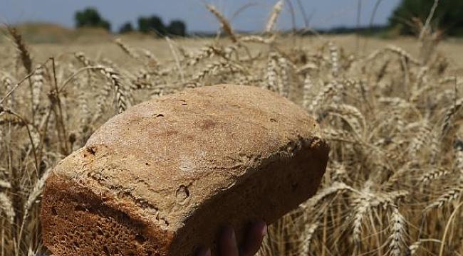 Ata tohumlarının buğdayından ekmek yapıp, internetten satıyor - Bursa Haberleri