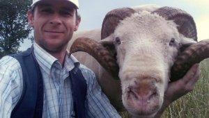 Çobanlar sosyal medyada birleşti - Bursa Haberleri