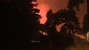 Dalaman'da orman yangını 17 saat sonra kontrol altına alındı