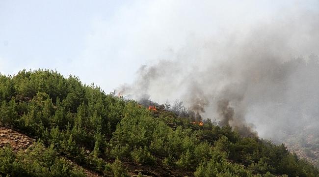 Dalaman'daki yangın yeniden aktif hale geldi