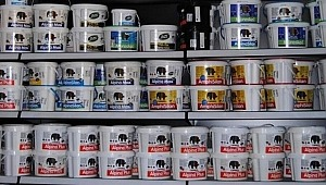 Filli Boya, Japonlara satıldı