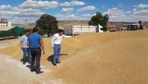 Günlük 800 ton buğday ve arpa sevkiyatı yapılıyor
