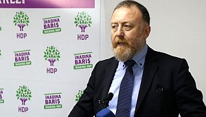 HDP'li Temelli'den yeni parti yorumu