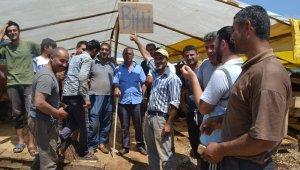 Kurban Pazarı'nda hayvanlar erken tükendi - Bursa Haberleri