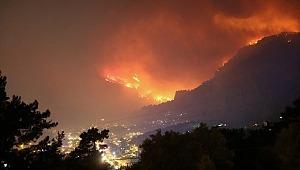 Muğla'daki yangınla ilgili Bakan Pakdemirli'den açıklama