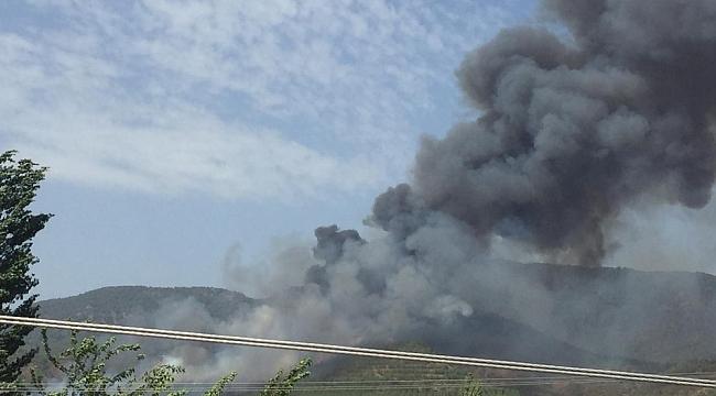 Muğla'da üçüncü yangın Fethiye'de başladı