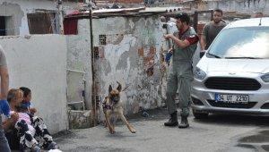 Polisten 'Fırtına'lı uyuşturucu baskını - Bursa Haberleri