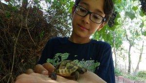 12 yaşındaki Mehmet, hayvan sevgisiyle sosyal medya fenomeni oldu