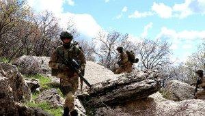 129 TİM harekete geçti... Kıran Operasyonu başlatıldı