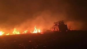 Avşa Adası'nda otluk alanda çıkan yangın, ekipleri alarma geçirdi!