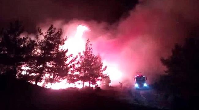 Çanakkale Kara Savaşları'nın yaşandığı tarihi Gelibolu Yarımadası'nda korkutan orman yangını!