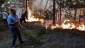 Marmara Adası'ndaki yangınla ilgili 2 kişi hakkında karar verildi