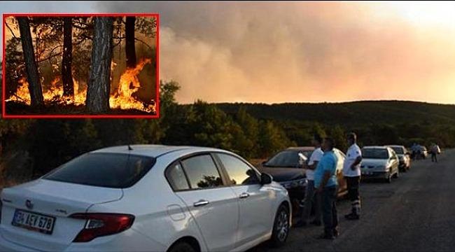 Onlarca araç, yüzlerce işçiye rağmen yangın halen söndürülemedi!