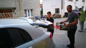 Pitbullun saldırısına uğrayan hamile kedi kurtarılamadı - Bursa Haberleri