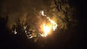 25 farklı noktada orman yangını