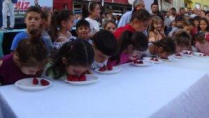 Bursa'da ilki düzenlenen Çilek Festivali yoğun ilgi gördü - Bursa Haberleri