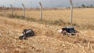 İki genç mısır tarlasında baygın halde bulundu