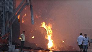 Kırklareli'de büyükbaş hayvanların bulunduğu çiftlikte yangın çıktı
