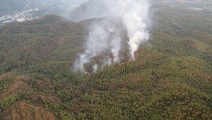 Ortaca'daki yangına havadan müdahale devam ediyor