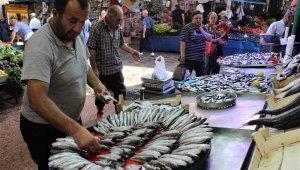 Tezgâhta en ucuz balık sardalye - Bursa Haberleri