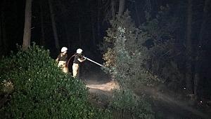 Ümraniye'de ormanlık alanda yangın paniği