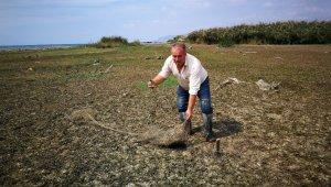 İznik gölü çekildi, balık ağları ortaya çıktı - Bursa Haberleri