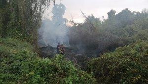 Manavgat Irmak kenarında çalılık alanda yangın çıktı
