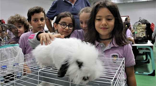 Öğrenciler okulu hayvanat bahçesine çevirdi - Bursa Haberleri