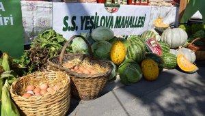 Yöresel ürünler festivalde görücüye çıkıyor - Bursa Haberleri