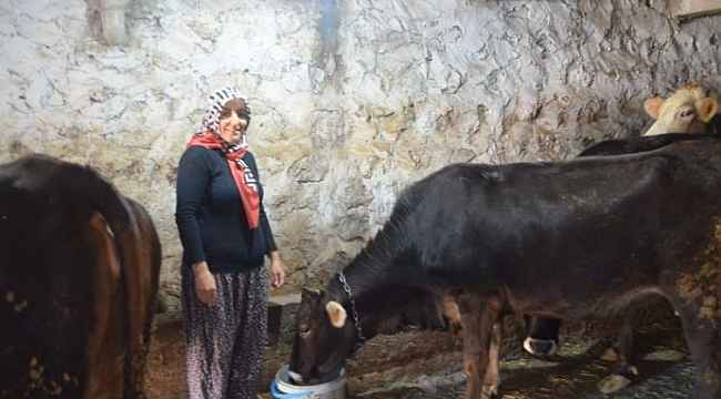 4 çocuk annesi kadın hayvancılık yapmak için köye taşındı