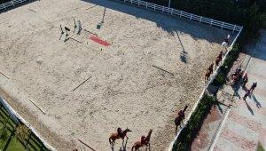 Atlı polislerin nefes kesen eğitimi havadan görüntülendi