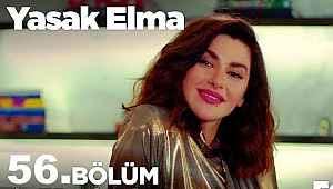 Yasak Elma 56. yeni bölüm - Yasak Elma 56. son bölüm full tek parça izle: 11 Kasım 2019 Fox tv