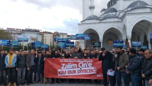 7 şehirde Doğu Türkistan eylemi düzenlendi